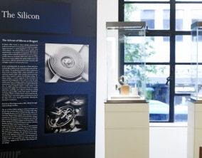 Spotlight on Breguet's Inventions in New Zealand